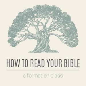 "A drawing of a large tree with the text, ""how to read your bible, a formation class."""