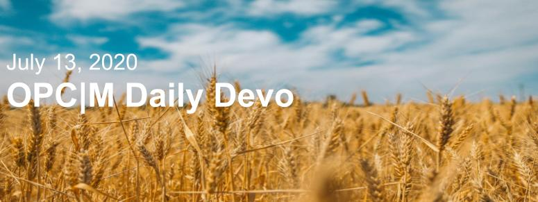 "A wheat field with the text, ""July 13, 2020, OPCM Daily Devo""."