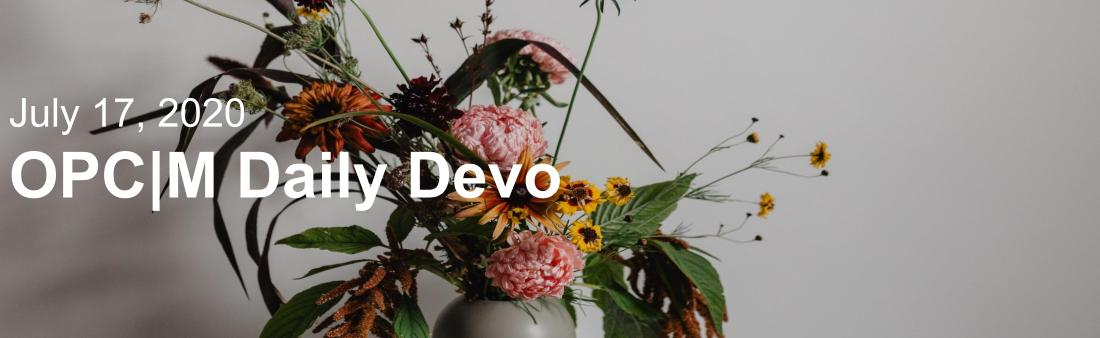 "A vase of flowers with the text, ""July 17, 2020. OPCM Daily Devo""."
