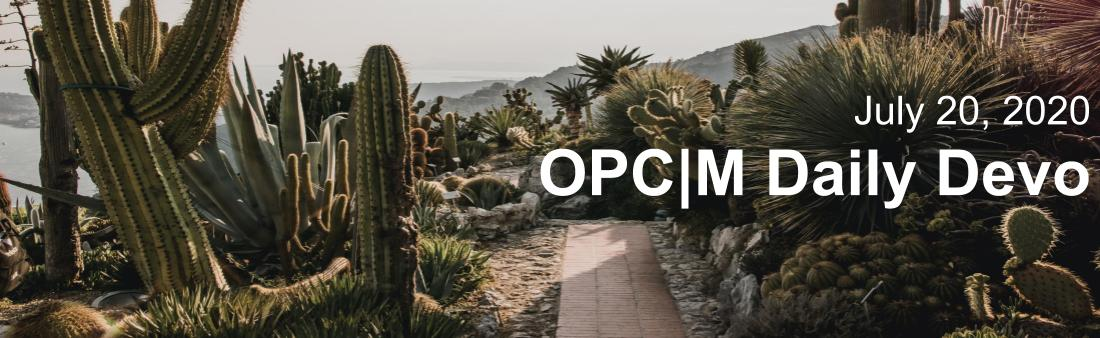 "A cactus garden with a path through it and the text, ""July 20, 2020. OPCM Daily Devo""."