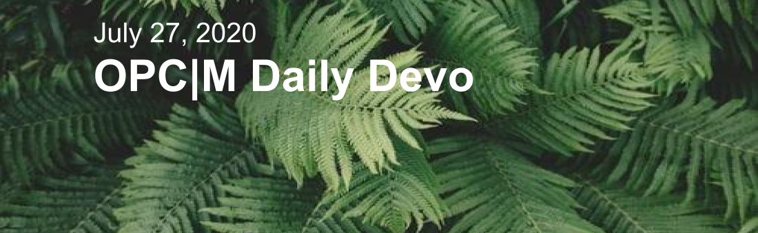 "Palm tree leaves with the text, ""July 27, 2020 OPCM Daily Devo""."