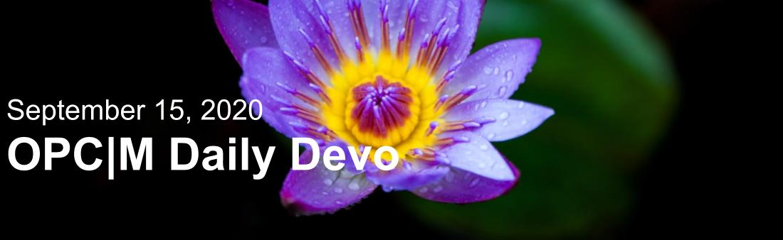 "A purple flower with the text, ""September 15, 2020. OPCM Daily Devo."""
