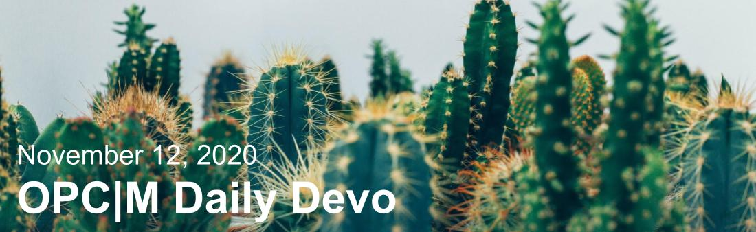 """Cacti with the text, """"November 12, 2020. OPCM daily devo."""""""