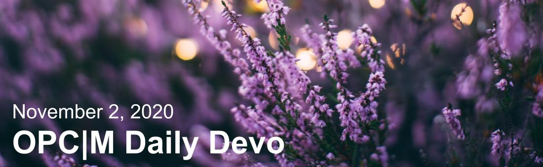 """Purple flowers with the text, """"November 2, 2020. OPCM daily devo."""""""
