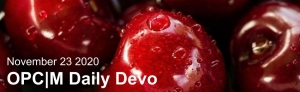 """Red cherries with the text, """"November 23, 2020. OPCM daily devo."""""""