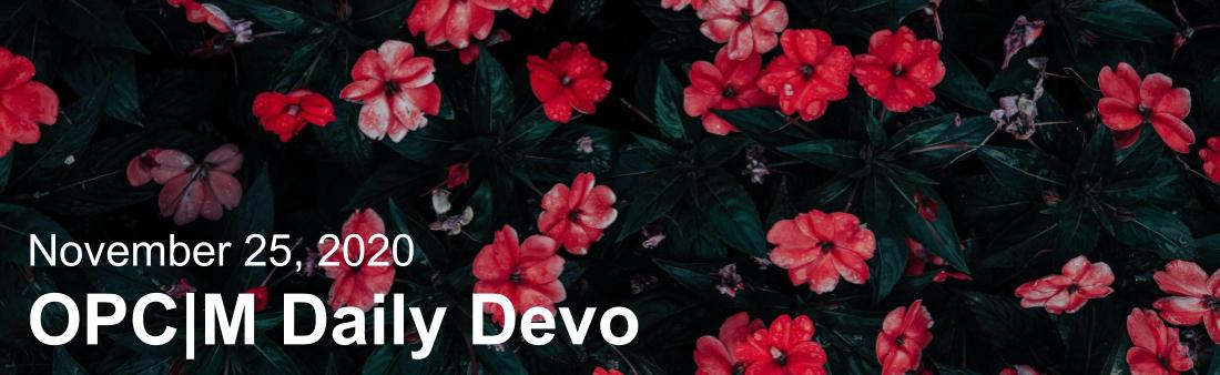 "Red flowers with the text, ""November 25, 2020. OPCM daily devo."""