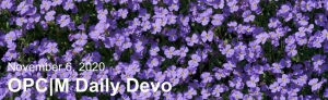 "purple flowers with the text, ""November 6, 2020. OPCM daily devo."""