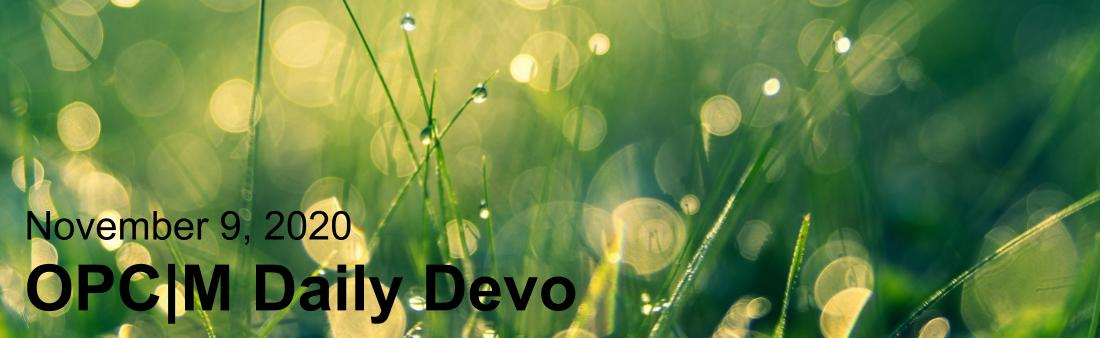 "Green grass with the text, ""November 9, 2020. OPCM daily devo."""