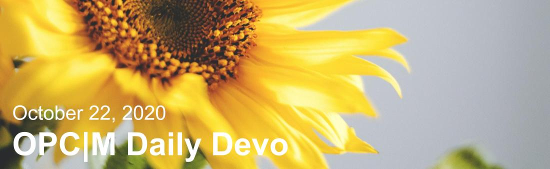 """A sunflower with the text, """"October 22, 2020. OPCM daily devo."""""""