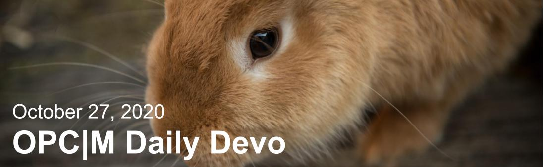 "A brown bunny with the text, ""October 27, 2020. OPCM daily devo."""