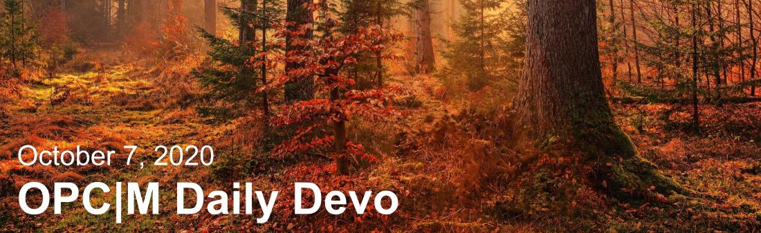 "A sunset in a forest with the text, ""October 7, 2020. OPCM daily devo."""