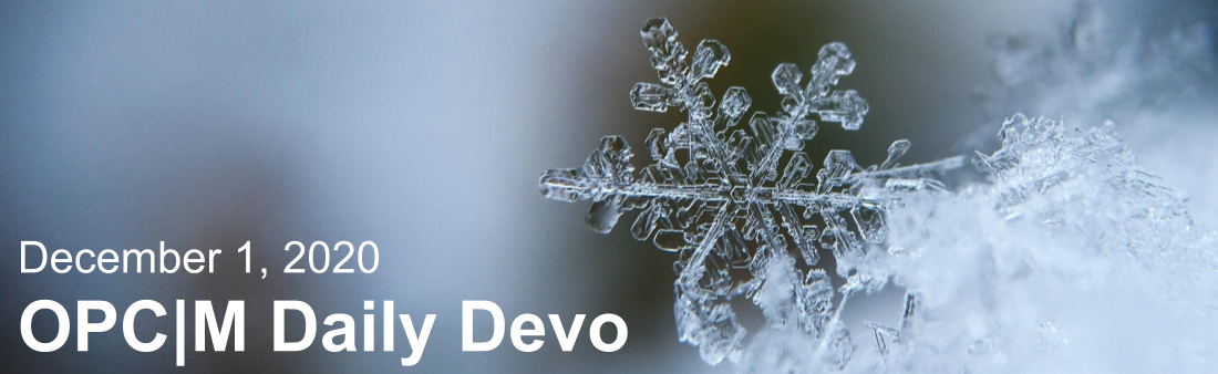 "A snowflake with the text, ""December 1, 2020. OPCM daily devo."""