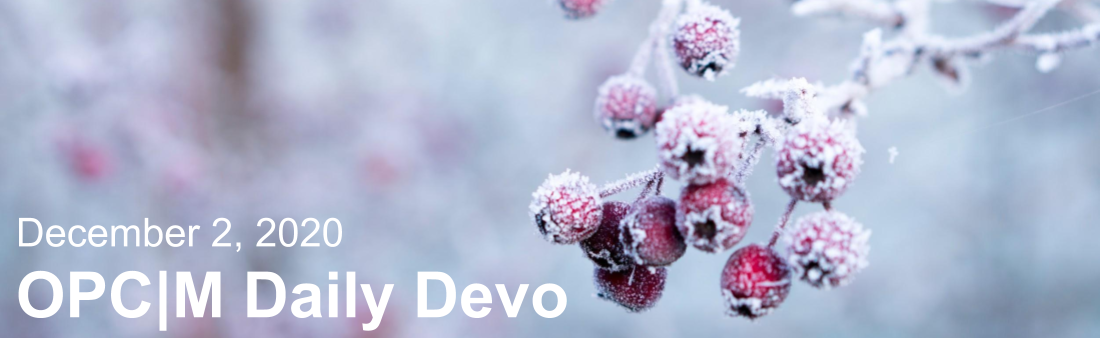 """Red berries covered in snow with the text, """"December 2, 2020. OPCM daily devo."""""""