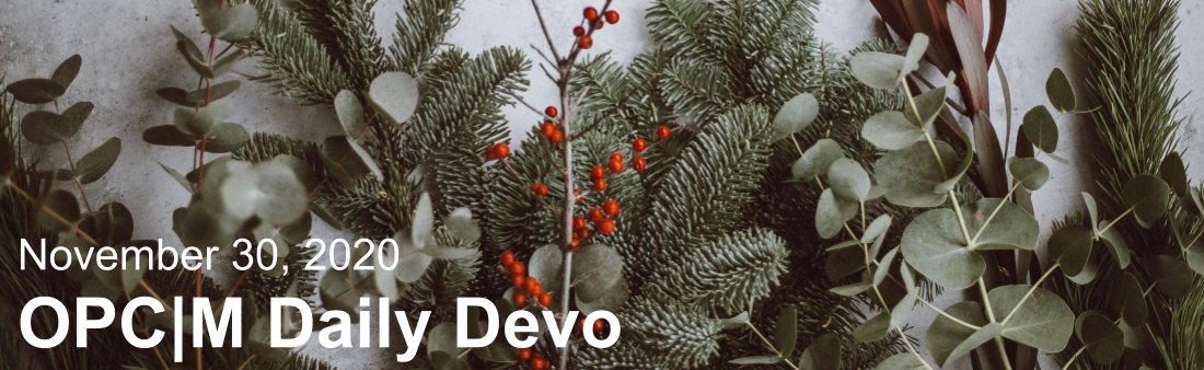 """The text, """"November 30, 2020. OPCM daily devo,"""" against pine tree branches."""