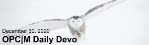 """A snowy owl with the text, """"December 30, 2020. OPCM daily devo."""""""