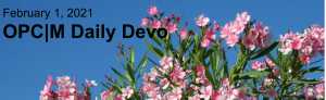 """Pink flowers with blue sky and the text, """"February 1, 2021. OPCM daily devo."""""""