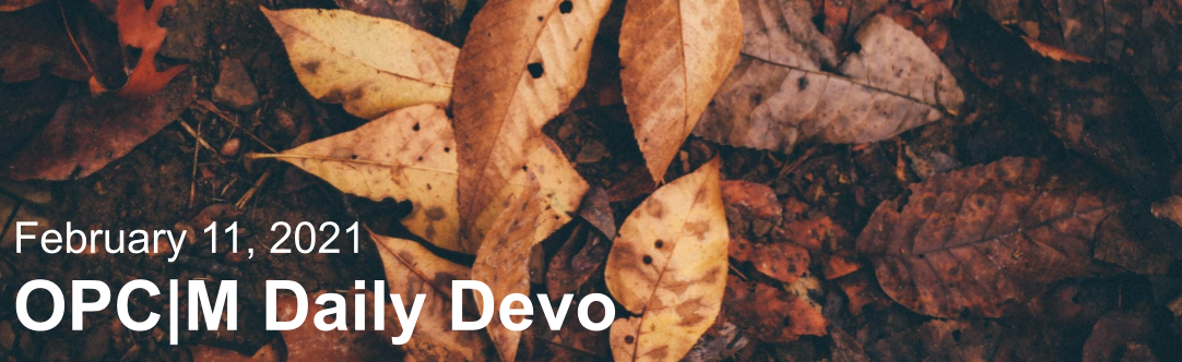 """Brown leaves with the text, """"February 11, 2021. OPCM daily devo."""""""