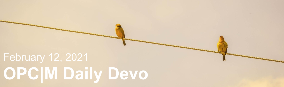 """Two brown birds sitting on a wire with the text, """"February 12, 2021. OPCM daily devo."""""""