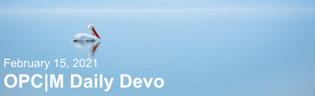 "A bird swimming on a lake with the text, ""February 15, 2021. OPCM daily devo."""