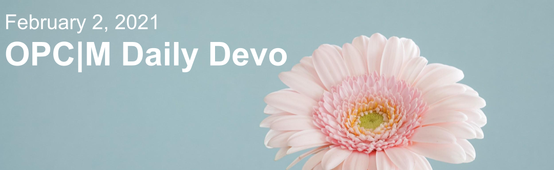 "A pink flower with the text, ""February 2, 2021. OPCM daily devo."""