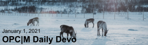 """reindeer grazing in a snowy field with the text, """"January 1, 2021. OPCM daily devo."""""""