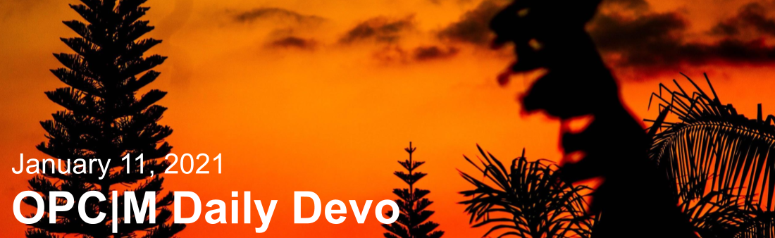 "Trees against an orange sunset with the text, ""January 11, 2021. OPCM daily devo."""