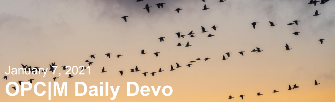 """Birds flying with the text, """"January 7, 2021. OPCM daily devo."""""""