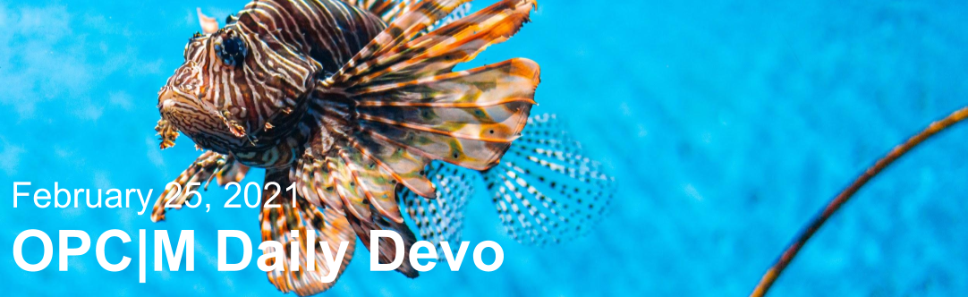 """A lionfish swimming with the text, """"February 25, 2021. OPCM daily devo."""""""