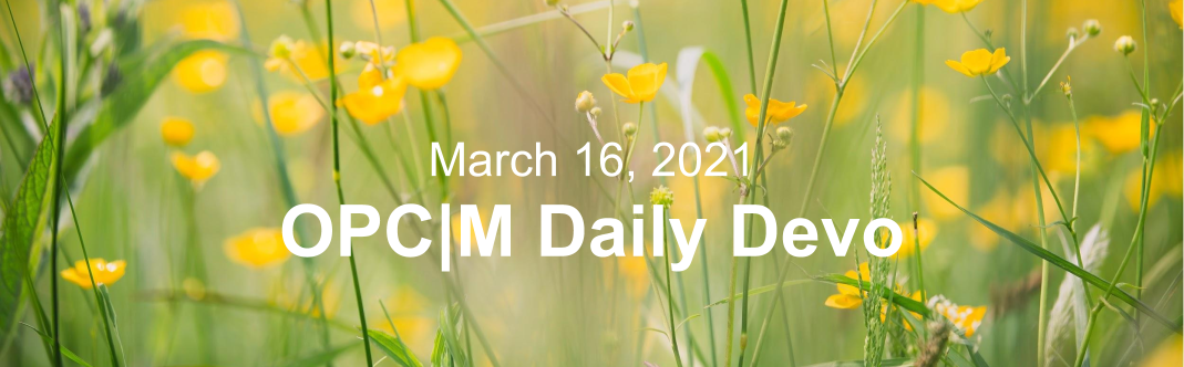 """Yellow flowers with the text, """"March 16, 2021. OPCM daily devo."""""""