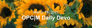 """Sunflowers with the text, """"March 17, 2021. OPCM daily devo."""""""
