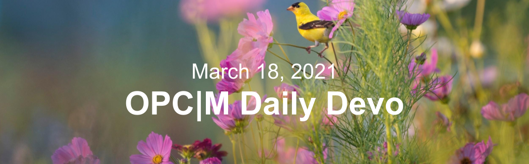 """Purple flowers and a yellow bird with the text, """"March 18, 2021. OPCM daily devo."""""""