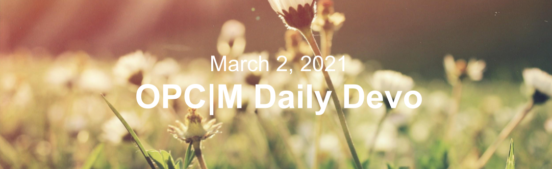 """White flowers with the text, """"March 2, 2021. OPCM daily devo."""""""