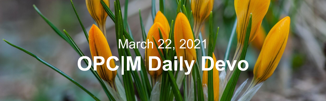 """Yellow flowers with the text, """"March 22, 2021. OPCM daily devo."""""""