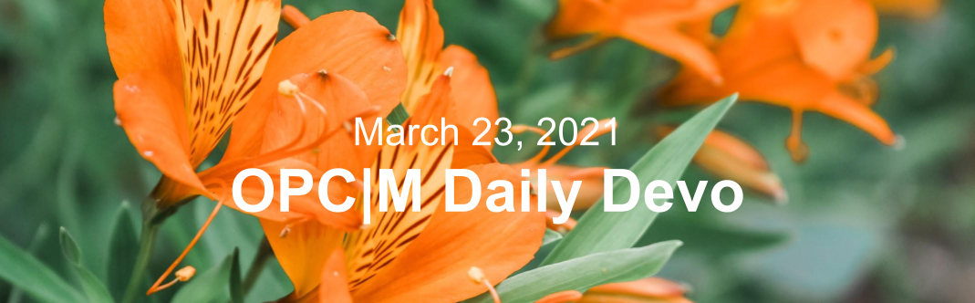 """Orange flowers with the text, """"March 23, 2021. OPCM daily devo."""""""