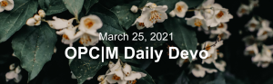 """Little white flowers with the text, """"March 25, 2021.OPCM daily devo."""""""