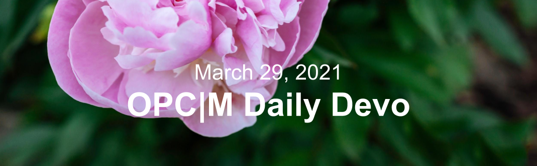 """A large pink flower with the text, """"March 29, 2021. OPCM daily devo."""""""