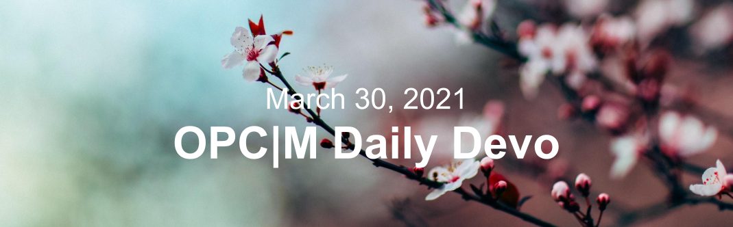 """White apple blossoms with the text, """"March 30, 2021. OPCM daily devo."""""""