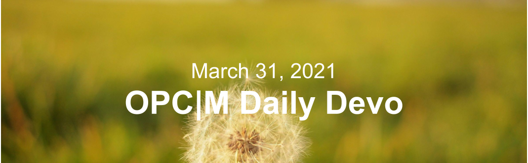 "A dandelion with the text, ""March 31, 2021. OPCM daily devo."""