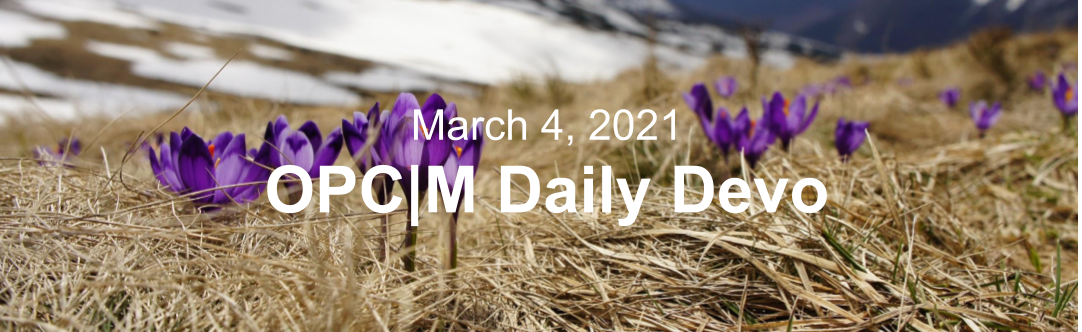 """Purple flowers in brown grass with the text, March 4, 2021. OPCM daily devo."""""""