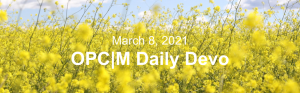 """Yellow flowers in a field with the text, """"March 8, 2021. OPCM daily devo."""""""