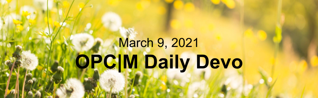 """Dandelions in a field with the text, """"March 9, 2021. OPCM daily devo."""""""