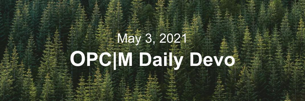 """A birds-eye view of pinetrees with the text, """"May 3, 2021. OPCM daily devo."""""""