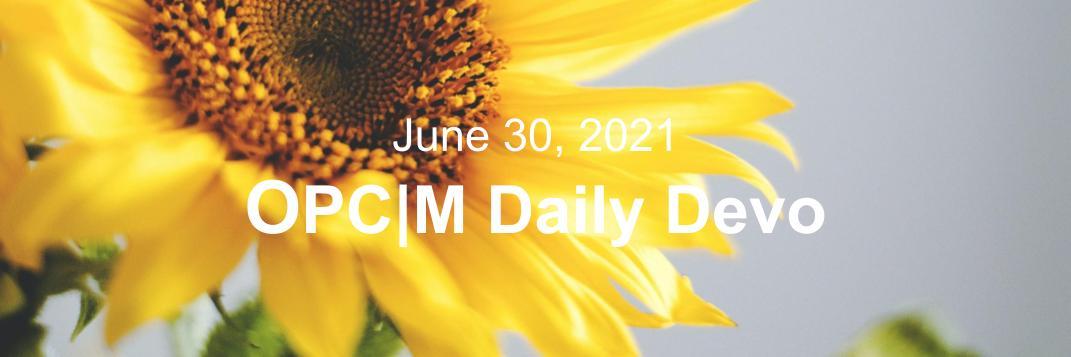 June 30th devo image, a sunflower.