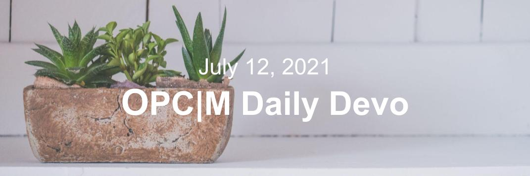 July 12th devo image, a potted plant on a white shelf.