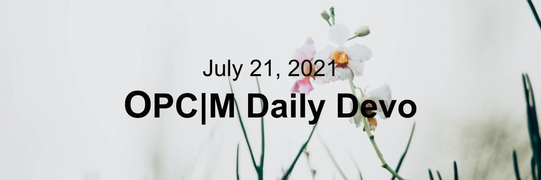 July 21st devo image, white orchids.