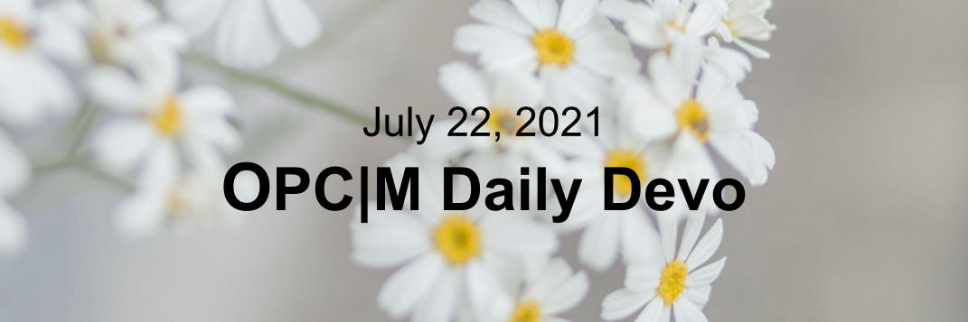 July 22nd devo image, white flowers.