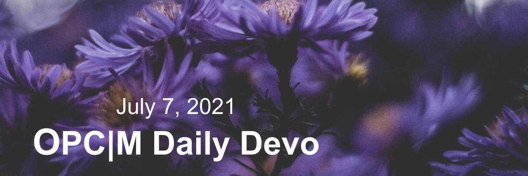 July 7th devo image, purple flowers.
