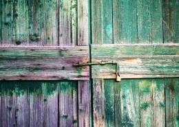 July 6th devo image, a purple and green wooden door.