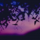 July 9th devo image, the silhouette of leaves against a purple sunset.