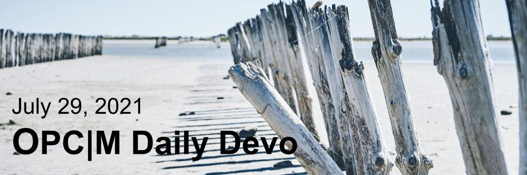 July 29th devo image, a beach with a driftwood fence.